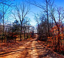 A country road in winter. by barnsis
