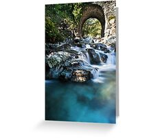 One Step On The Water Greeting Card