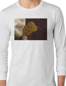 A tree fungus Long Sleeve T-Shirt