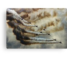 Swooping In (viewed 539 times at 8th Jan 2013) Canvas Print