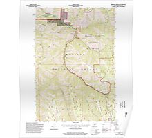 USGS Topo Map Oregon Bingham Springs 279046 1995 24000 Poster