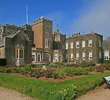 Powderham Castle by RedHillDigital
