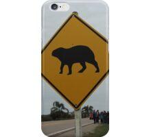 Capibaras crossing iPhone Case/Skin