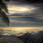 View from Beetle Rock, Sequoia National Park by Glenn Gilbert