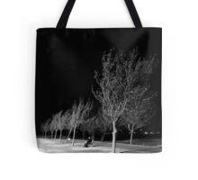 Ridgecrest Park in December Tote Bag