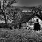 Old Barn - Sunset Texas by jphall