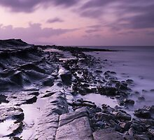 Kilve Beach at Dusk by kernuak
