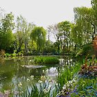 Monet&#x27;s Water Garden at Giverny in Springtime. by Alex Cassels