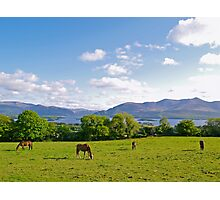Springtime in County Kerry Photographic Print