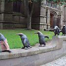 March of the Penguins, Dundee by biddumy