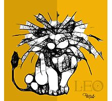Leo, Mighty Leo Photographic Print