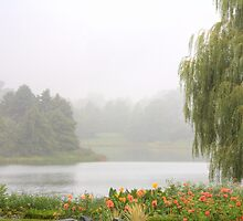Foggy Lake by Adam Bykowski