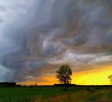 There's a storm a brewing! by vette