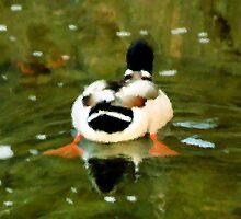 #285     Duck Behind by MyInnereyeMike