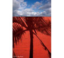 Red Brick Walls Are Still OK Photographic Print