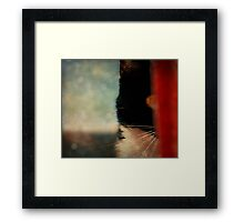 Silence from the Shadows. Framed Print