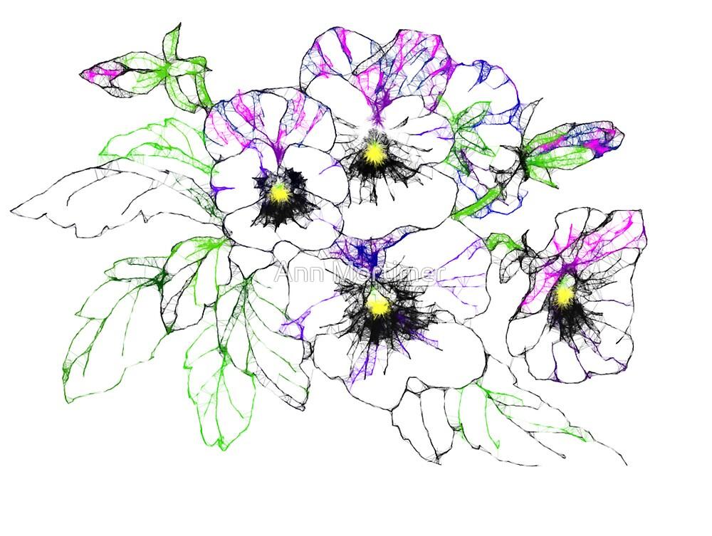 Scribbler pansies by Ann Mortimer