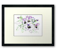 Scribbler pansies Framed Print