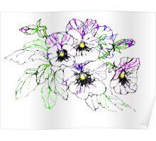 Scribbler pansies Poster