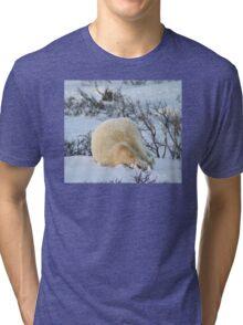 Yoga bear Plow pose Tri-blend T-Shirt