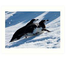 Chinstrap penguins toboggan across the snow in Antarctica Art Print