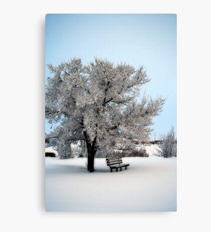 Wonderful, Wonderful Winter Canvas Print