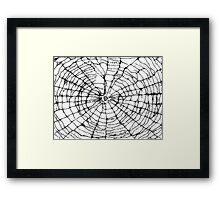 Scribbler Spider Framed Print