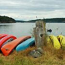 Canoes on Lopez Island by Doug Graybeal