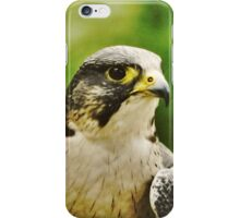 Falcon iPhone Case/Skin