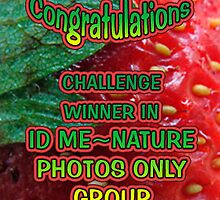 ID ME NATURE PHOTOS ONLY BANNER CHALLENGE by vigor
