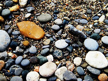 Pebbles at Point Pelee, Ontario by Graham Beatty