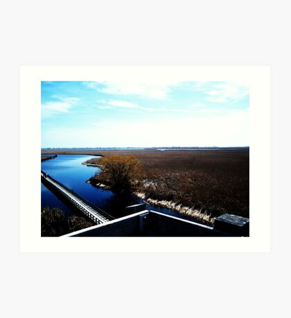 Point Pelee, Ontario- II Art Print