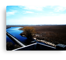 Point Pelee, Ontario- II Canvas Print