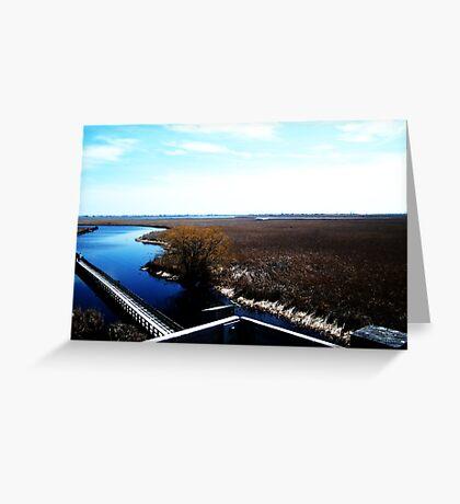 Point Pelee, Ontario- II Greeting Card