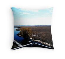 Point Pelee, Ontario- II Throw Pillow