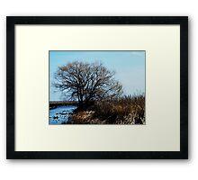 Point Pelee, Ontario Framed Print
