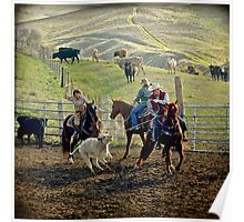 Roping Cattle Poster