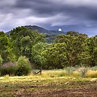 Siding Spring Observatory Warrumbungle by Frank Moroni