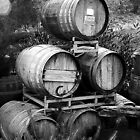 Wine Barrels by homendn