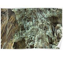 Carlsbad Caverns Detail 6 Poster