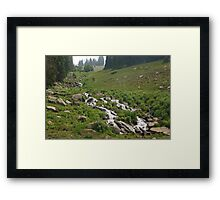 Mountainside Stream Framed Print