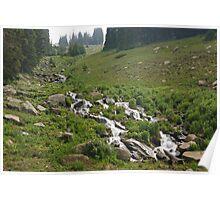 Mountainside Stream Poster
