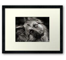A Shepherd Moment Framed Print