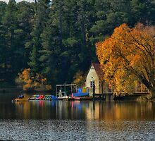 Tones on the Lake ( 1 ) by Larry Lingard-Davis