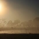 Fog at Sunrise. by Jeanette Varcoe.