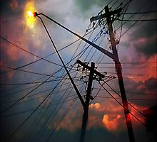 crossed wires by carol brandt
