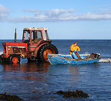 Roger Stephenson with a haul of crab by nigelphoto