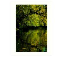 Using Nikon D70S - Autumn Reflections - St. James Park, London Art Print