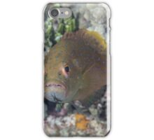 Angry Grouper iPhone Case/Skin