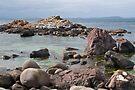 Rocks off Grass Point by Werner Padarin